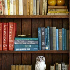 Graystone-Inn-shelves.jpg
