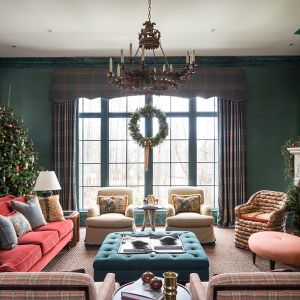 Atlanta-Holiday-showhouse-living-room-window.jpg